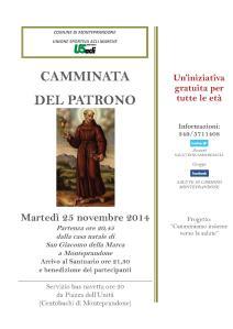 CAMMINATADEL PATRONO 25112014