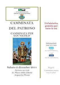 CAMMINATADEL PATRONO06122014